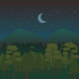 Paisagem da floresta da noite Foto de Stock