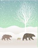 Paisagem da floresta do inverno da neve com urso pardos Imagens de Stock