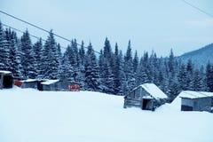 Paisagem da floresta do inverno Montanha no fumo Carpathian, Ucrânia, Europa Fotos de Stock