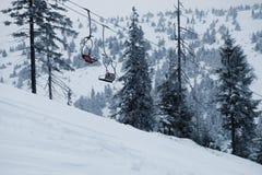 Paisagem da floresta do inverno Montanha no fumo Carpathian, Ucrânia, Europa Fotos de Stock Royalty Free