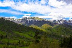 Paisagem da floresta da montanha imagens de stock royalty free