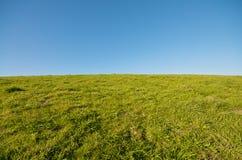 Paisagem da grama verde e céu azul em Berkeley março imagem de stock royalty free