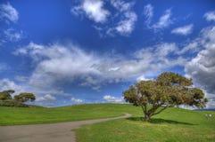 Paisagem da grama verde e céu nebuloso azul HDR imagem de stock