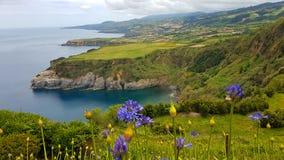 Paisagem da ilha de Açores fotografia de stock