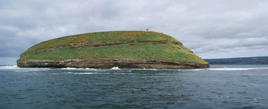 Paisagem da ilha onde os papagaio-do-mar vivem na baía de Skjalfandi em Islândia do norte fotos de stock