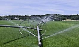 Paisagem da irrigação da exploração agrícola da grama fotografia de stock royalty free