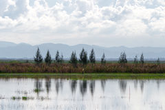 Paisagem da lagoa com fundo montanhoso fotografia de stock