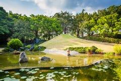 Paisagem da lagoa e da água Imagens de Stock