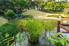 Paisagem da lagoa e da água no jardim japonês Foto de Stock Royalty Free