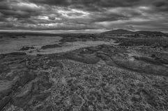 Paisagem da lava de Islândia Fotografia de Stock