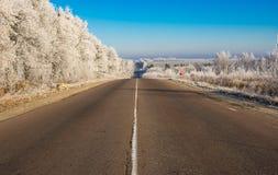Paisagem da manhã com a estrada que conduz à cidade de Trostianets Imagem de Stock Royalty Free