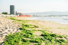 Paisagem da manhã da costa de mar do turista de Bulgária a areia fotos de stock