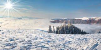 Paisagem da manhã do inverno Foto de Stock Royalty Free