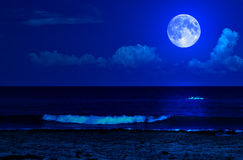 Paisagem da meia-noite do mar com uma Lua cheia Imagem de Stock