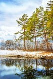 Paisagem da mola com o lago Fotografia de Stock