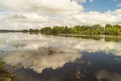 Paisagem da mola com rio Fotos de Stock Royalty Free