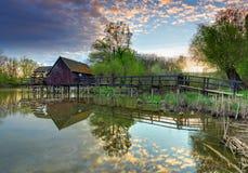 Paisagem da mola com watermill Foto de Stock Royalty Free