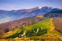 Paisagem da mola da montanha na luz solar Imagens de Stock