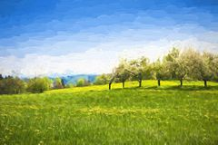 Paisagem da mola da pintura a óleo - árvores verdes do prado e de fruto Imagens de Stock