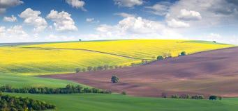 Paisagem da mola dos campos em montes coloridos Fotos de Stock Royalty Free