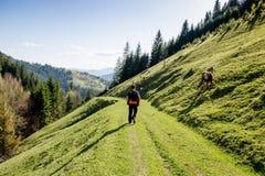 Paisagem da mola dos Carpathians Fotos de Stock Royalty Free