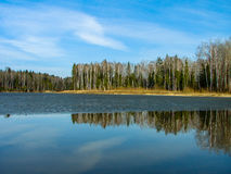 Paisagem da mola no reservatório na região de Kaluga em Rússia fotos de stock royalty free