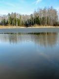 Paisagem da mola no reservatório na região de Kaluga em Rússia fotografia de stock royalty free