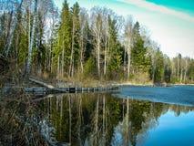 Paisagem da mola no reservatório na região de Kaluga em Rússia imagem de stock