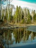 Paisagem da mola no reservatório na região de Kaluga em Rússia fotos de stock