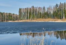 Paisagem da mola no reservatório na região de Kaluga em Rússia imagens de stock