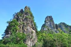 Paisagem da montanha Fotografia de Stock