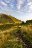 Paisagem da montanha com árvore de grama e retrato do fundo do céu Imagem de Stock Royalty Free