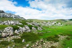 Paisagem da montanha com cores vívidas grama e céu fotografia de stock