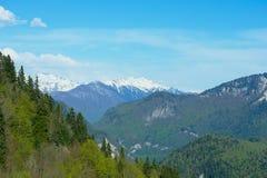 A paisagem da montanha com floresta colorida e elevação neve-tampou picos do dia surpreendente bonito das montanhas de Cáucaso Fotos de Stock