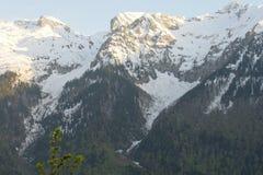A paisagem da montanha com floresta colorida e elevação neve-tampou picos do dia surpreendente bonito das montanhas de Cáucaso Fotos de Stock Royalty Free