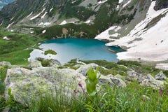 Paisagem da montanha com lago. fotos de stock