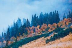 Paisagem da montanha com névoa abaixo dos picos e das nuvens acima deles foto de stock