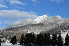 Paisagem da montanha com neve e árvores Imagem de Stock Royalty Free