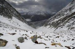 Paisagem da montanha com o céu dramático em cumes suíços Imagens de Stock