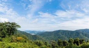 A paisagem da montanha, com os picos de montanha cobertos com a floresta Fotografia de Stock Royalty Free