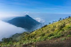 Paisagem da montanha com panorama do fundo da árvore e do céu de grama Imagens de Stock Royalty Free