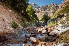 Paisagem da montanha com rio Exposição longa Fotos de Stock