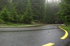 Paisagem da montanha com uma estrada no primeiro plano, e pinhos e abetos no fundo, com linhas amarelas Fotografia de Stock Royalty Free
