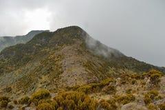 Paisagem da montanha contra um fundo nevoento foto de stock royalty free