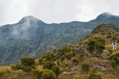 Paisagem da montanha contra um fundo nevoento imagem de stock royalty free
