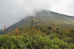 Paisagem da montanha contra um fundo nevoento imagens de stock royalty free
