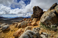 Paisagem da montanha, cruzamento alpino de Tongariro Fotografia de Stock