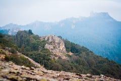 Paisagem da montanha da floresta no crepúsculo Fotografia de Stock Royalty Free
