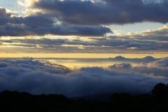 Paisagem da montanha da manhã com as ondas da névoa Imagens de Stock Royalty Free