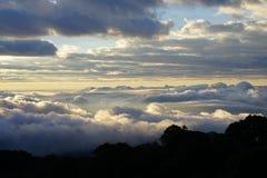 Paisagem da montanha da manhã com as ondas da névoa Imagem de Stock